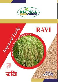 Improved Paddy Seeds 04
