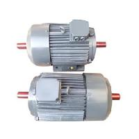 double end shaft motor