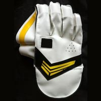Cricket Wicket Keeper Gloves