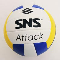 Promotional Volleyballs