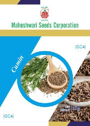 GC4 Cumin Seeds