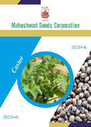GCH-4 Castor Seeds