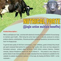 NUTRICAL FORTE, Poultry Feed Supplement
