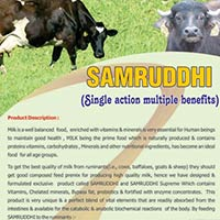 Samruddhi, Poultry Feed Supplement
