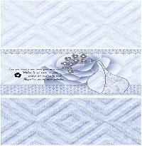Wall Tiles 250x750mm 09