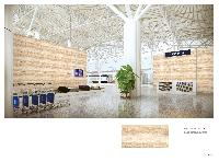 Wall Tiles 500x1000mm 03