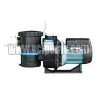 Swimming Pool Circulation Pump