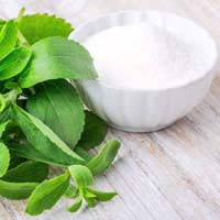 Fresh Stevia Leaves