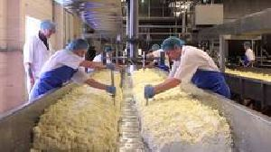 Cheese Processing Plant