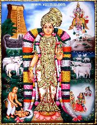 Andal Tanjore Painting (10016)