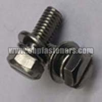 SS 304 Hex Slotted Screw