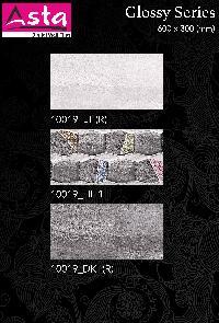 Glossy Series Wall Tiles (30x60) (10019)