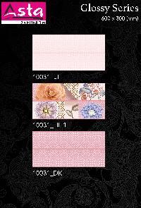 Glossy Series Wall Tiles (30x60) (10031)