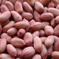 Bold Peanut Kernels 60/70