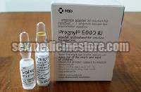 Pregnyl Injection