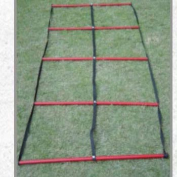 Double Agility Ladder