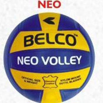 Neo Volleyballs