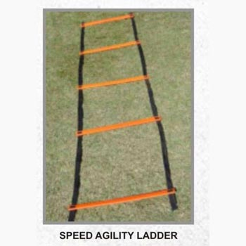 Single Agility Ladder