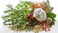Pure Herbs & Spices