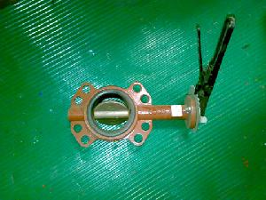 Butterfly Valves 01