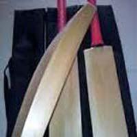 Himachal Willow Cricket Bat