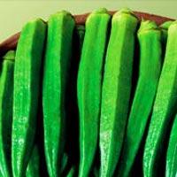 Tarjanya Hybrid Okra Seeds