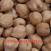 Australian Gram Peas