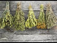 Natural Dried Herbs