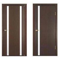 Flush Door 03
