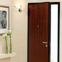 Flush Door 04