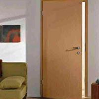 Flush Door 06