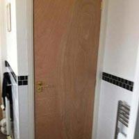 Flush Door 07