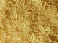 1121 Dark Golden Basmati Rice