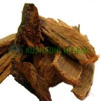 Ashoka Extract