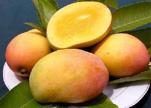 Rajapuri Mango 02