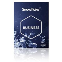 Business Snowflake Software