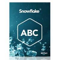 Snowflake Software
