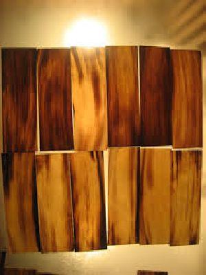 Horn Plates