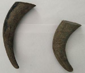 Horn Tips