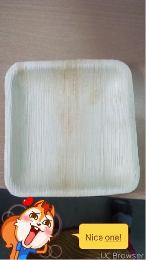 Areca Leaf Plate10/10 Square