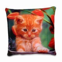 Sublimation Pillow Printing