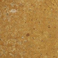 Jaisalmer Fossil Indian Marble Stone