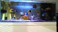 Marine Aquarium 02