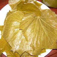 Preserved Grapes Leaves